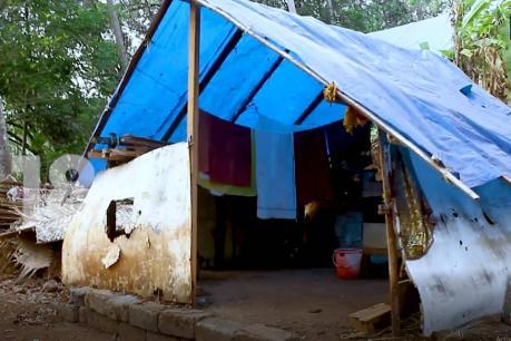 NEWS 18 IMPACT   പുലപ്രക്കുന്ന് കോളനിയിലെ 9 കുടുംബങ്ങള്ക്ക് പട്ടയമായി; വിതരണം ശനിയാഴ്ച